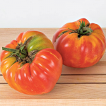 Tomato 'Striped German'