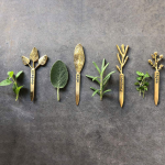 Brass Herb Garden Markers, set of 4
