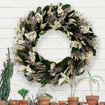 New Preserved Wreaths & Decor