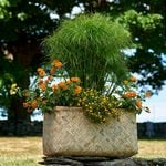 Cement-lined Bamboo Planter, rectangle