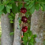 Copper Blossoms Hummingbird Feeder