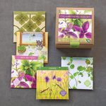 Organic Culinary Herb Set in Art Seed Packs
