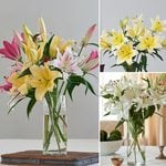 Months of Fragrant Lily Bouquets