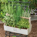 <strong>Saturday, May 22 - 10:30 a.m.</strong> Veggies & Herbs for Small Spaces, Talk and