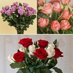 Months of Elegant Rose Bouquets