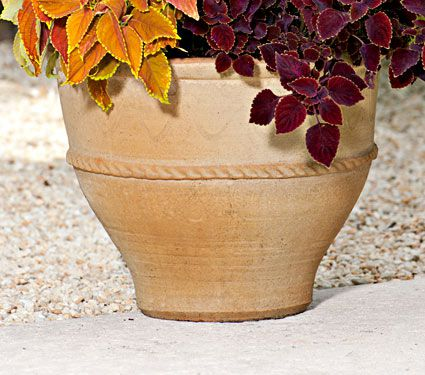 Containers for Planting Annuals