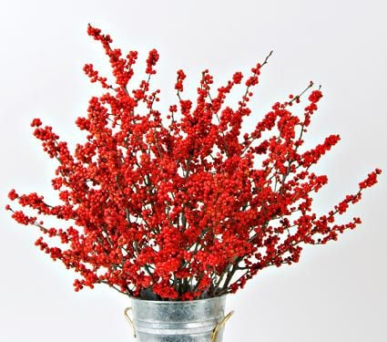 Winterberry Stems (set of 4 stems)