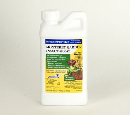 Garden Insect Spray, 16 oz concentrate