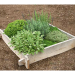 White Cedar Raised Bed, 4x4