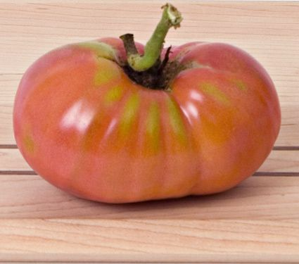 Tomato 'German Johnson'