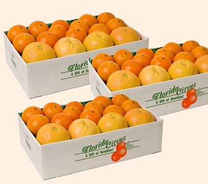 Citrus Sampler Gift Box, 10-lb box - Standard Shipping Included