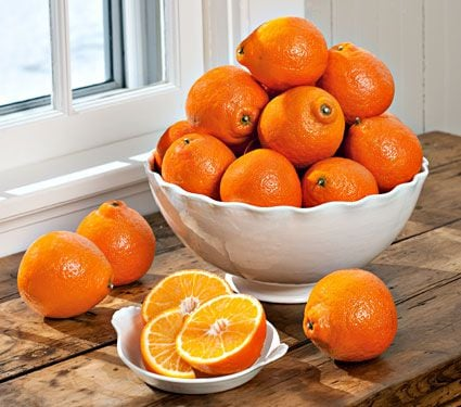 Honeybells -- the Sweetest, Juiciest Citrus - 10 lb box