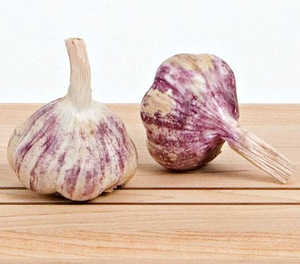 Garlic Early Italian Purple, 1 lb