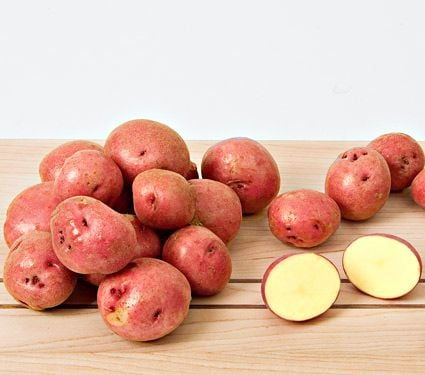 Potato Red Gold, bag of 10 minitubers