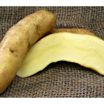 Potato Austrian Crescent