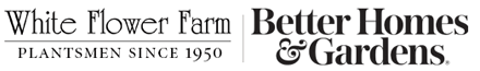 Whiteflowerfarm Logo